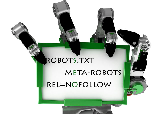 Robots.txt, SEO Calgary Expert, Search Engine Optimization